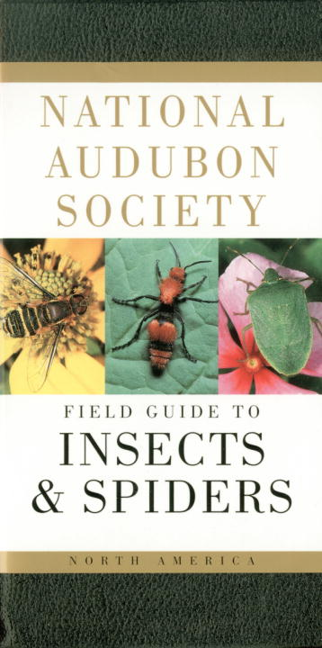 National Audubon Society Field Guide to North American Insects and Spiders By Milne, Lorus/ Lorus, Margery